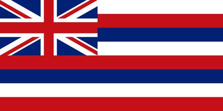 Vlag van de Amerikaanse staat Hawaï in de juiste maat, verhoudingen en kleuren. Nauwkeurige afmetingen. Hawaiian officieel symbool. Amerikaanse patriottische element. USA banner. Verenigde Staten van Amerika achtergrond. vector illustratie Vector Illustratie