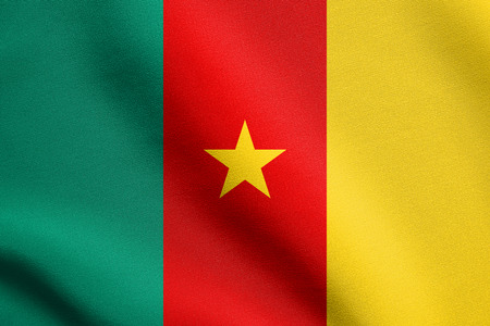 cameroonian: Cameroonian national official flag. African patriotic symbol, banner, element, background. Flag of Cameroon waving in the wind with detailed fabric texture Stock Photo