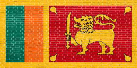 solid state: Sri Lankan national official flag. Patriotic symbol, banner, element, background. Accurate dimensions. Correct size, colors. Flag of Sri Lanka on brick wall texture background