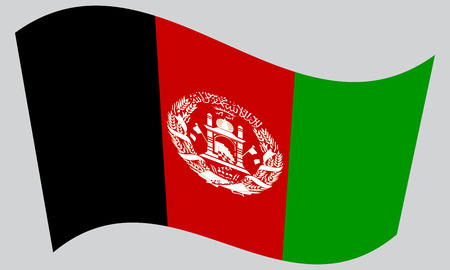 afghan: Afghan national official flag. Patriotic symbol, banner, element, background. Correct colors. Flag of Afghanistan waving on gray background, vector Illustration