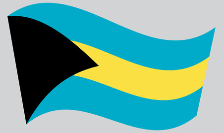 bahamian: Bahamian national official flag. Patriotic symbol, banner, element, background. Correct colors. Flag of Bahamas waving on gray background, vector