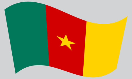 cameroonian: Cameroonian national official flag. African patriotic symbol, banner, element, background. Correct colors. Flag of Cameroon waving on gray background, vector