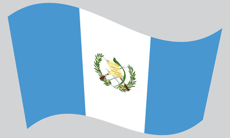 guatemalan: Guatemalan national official flag. Patriotic symbol, banner, element, background. Correct colors. Flag of Guatemala waving on gray background, vector