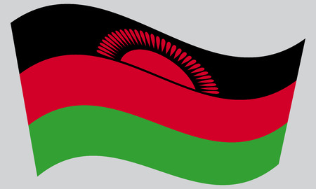 malawian: Malawian national official flag. African patriotic symbol, banner, element, background. Correct colors. Flag of Malawi waving on gray background, vector