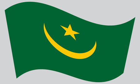 Mauritanian national official flag. African patriotic symbol, banner, element, background. Correct colors. Flag of Mauritania waving on gray background, vector