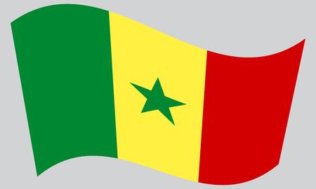 senegalese: Senegalese national official flag. African patriotic symbol, banner, element, background. Correct colors. Flag of Senegal waving on gray background, vector Illustration