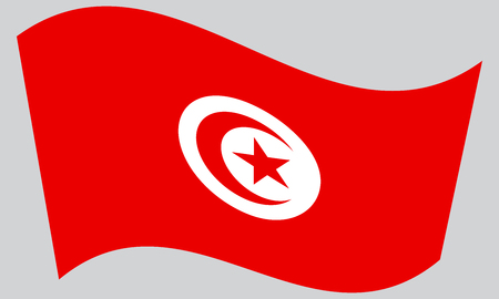 Tunisian national official flag. African patriotic symbol, banner, element, background. Correct colors. Flag of Tunisia waving on gray background, vector Illustration