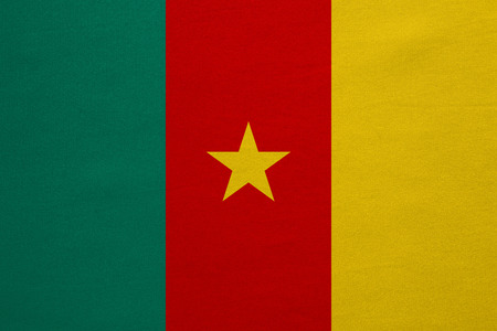 cameroonian: Cameroonian national official flag. African patriotic symbol, banner, element, background. Correct colors. Flag of Cameroon with real detailed fabric texture, accurate size, illustration