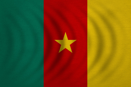 cameroonian: Cameroonian national official flag. African patriotic symbol, banner, element, background. Correct colors. Flag of Cameroon wavy with real detailed fabric texture, accurate size, illustration