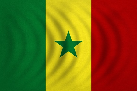 senegalese: Senegalese national official flag. African patriotic symbol, banner, element, background. Correct colors. Flag of Senegal wavy with real detailed fabric texture, accurate size, illustration
