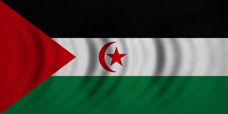 sahrawi arab democratic republic: Sahrawi national official flag. Western Sahara patriotic symbol. SADR banner element background. Correct colors. Flag of Sahrawi Arab Democratic Republic wavy fabric texture accurate size illustration