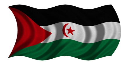 sahrawi arab democratic republic: Sahrawi national official flag. Western Sahara patriotic symbol. SADR banner, element, background. Correct color. Flag of Sahrawi Arab Democratic Republic wavy on white, fabric texture 3D illustration
