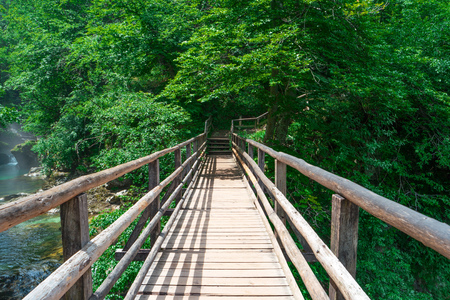 Wooden pedestrian bridge over river in green forest, Triglav national park, Slovenia, Alps, Europe. Beautiful scenery. Summer landscape. Adventure concept. Travel in Slovenia. Pedestrian timber bridge