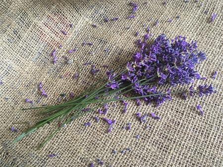 Purple levender on juta canvas