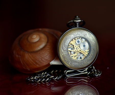 Pocket watch with chain and sea shell on the table