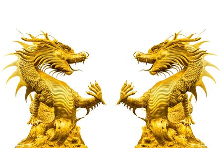 Double golden dragon statue at isolated on white background photo