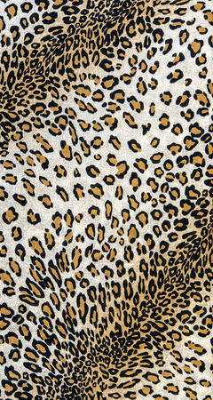 The fabric on striped leopard on background photo