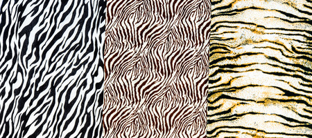 The fabric on striped zebra and tiger on background photo