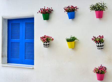 blue window and colorful fake flower in the zinc vase on the white wall photo