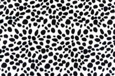 texture of leopard leather for background photo