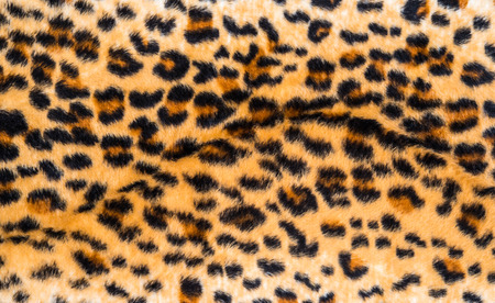 texture of leopard skin and fur for background photo