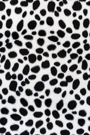 The texture of leopard leather for background photo