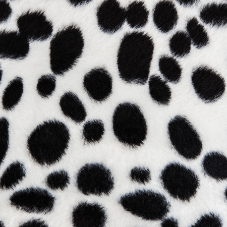 The texture of dog fur for background