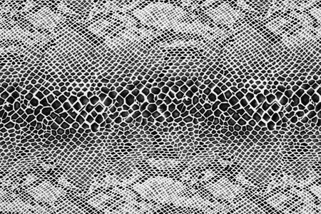 背景のストライプ生地ヘビ革の質感