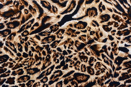 tiger skin: texture of print fabric striped leopard for background