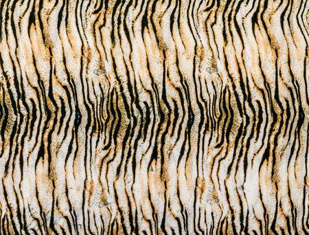 Texture de close up impression tigre rayé de tissu pour le fond Banque d'images - 33784717
