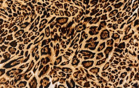 leopard background: texture of print fabric stripes leopard for background