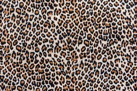 texture of print fabric striped leopard for background Reklamní fotografie - 35075769