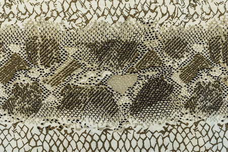 texture of print fabric striped snake leather for background