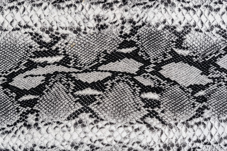 背景のストライプ プリント生地ヘビ革の質感