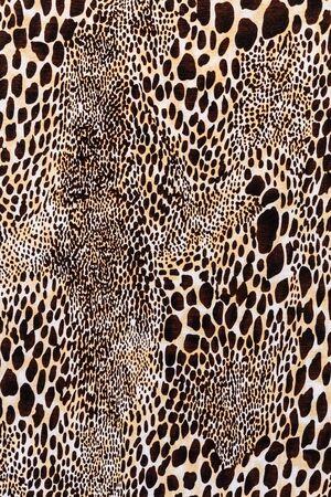 Texture de léopard rayé de tissu imprimé pour le fond Banque d'images - 36966015