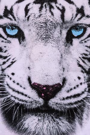 textuur van drukken stof gestreept de witte tijger gezicht voor achtergrond