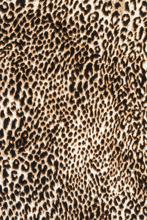 for print: texture of print fabric striped leopard for background