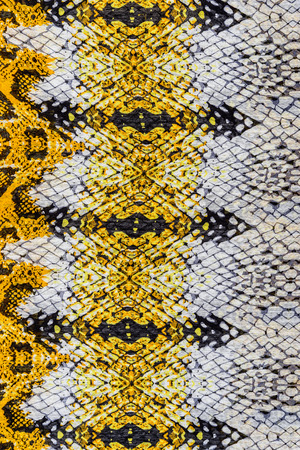 texture of print fabric striped snake leather for background photo