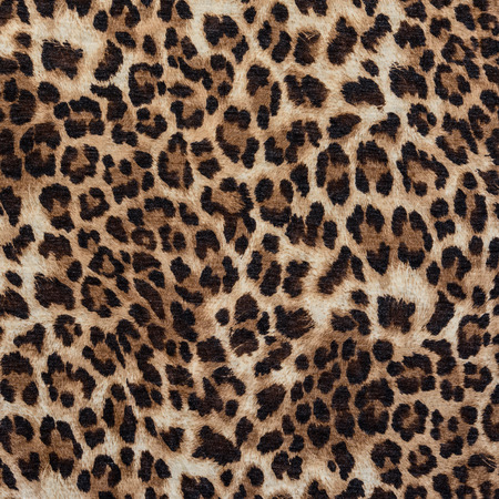 leopard background: texture of print fabric striped leopard for background