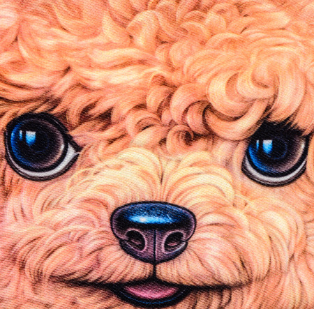 texture of print fabric striped poodle dog for background photo