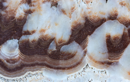 mottle: texture of natural marble stone for background