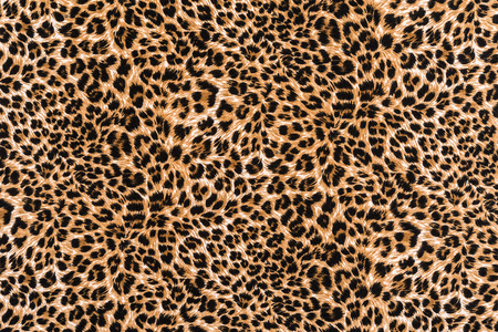 fabric texture: texture of print fabric striped leopard for background
