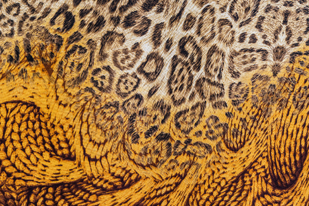 mottle: texture of print fabric striped leopard and feather for background