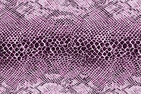 cobra snake: texture of print fabric striped snake leather for background