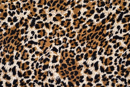 leopard print: texture of print fabric striped leopard for background
