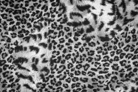 animal fur: texture of print fabric striped leopard for background
