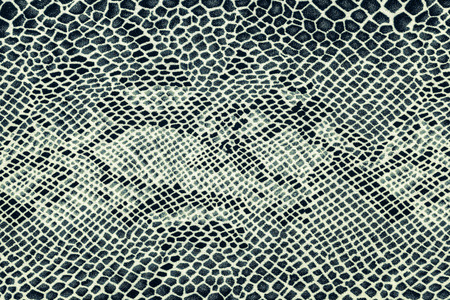 serpiente cobra: textura de la tela de la impresi�n de cuero de serpiente de rayas para el fondo Foto de archivo