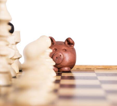 �chessboard: Piggy en una profundidad de tablero de ajedrez de campo. Foto de archivo