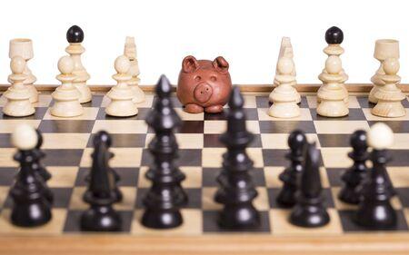 �chessboard: Piggy en un tablero de ajedrez, est� esperando un movimiento. Foto de archivo