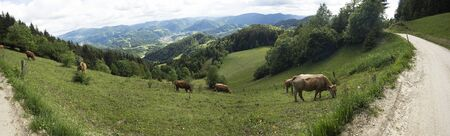 Green panoramic landscape with mountains ridges valleys farms and houses.
